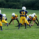 perfectionism in young athletes